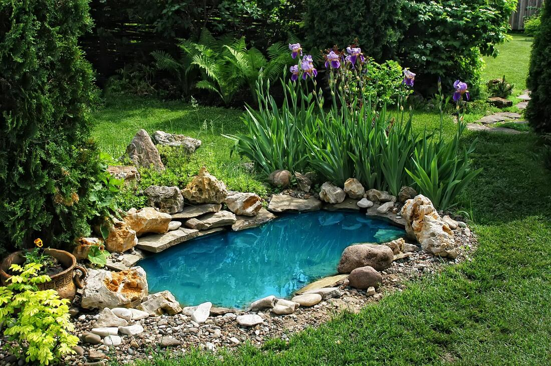 small pool in the landscape
